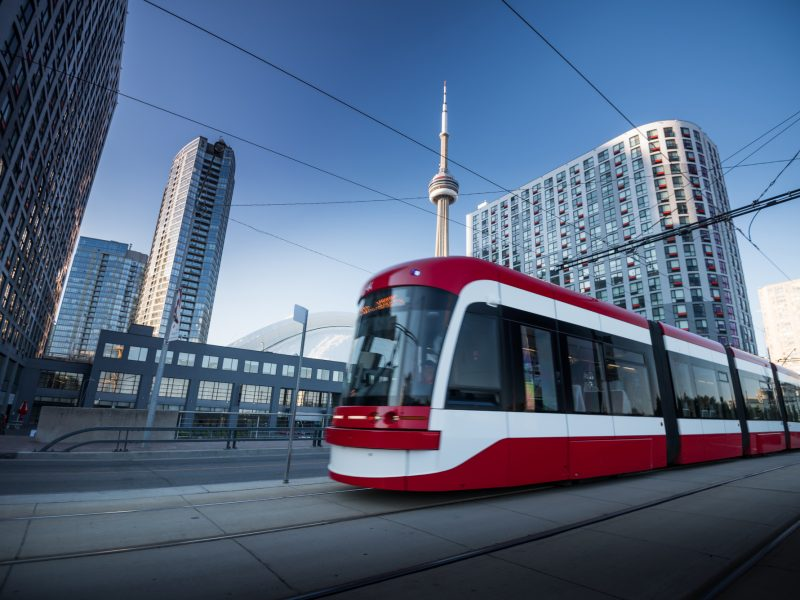 Rodents on the TTC: What That Means for Toronto Residents